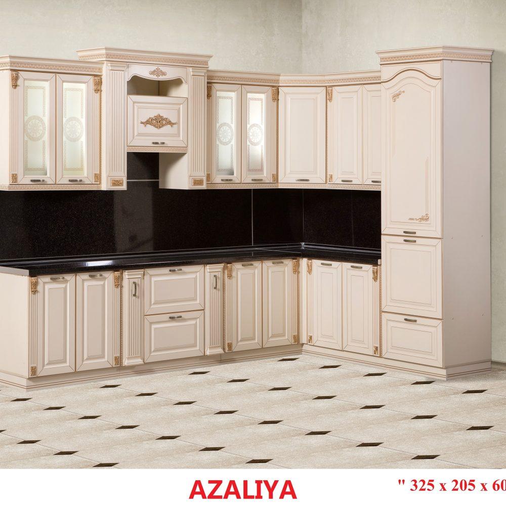 Азалия 325-205 (1)